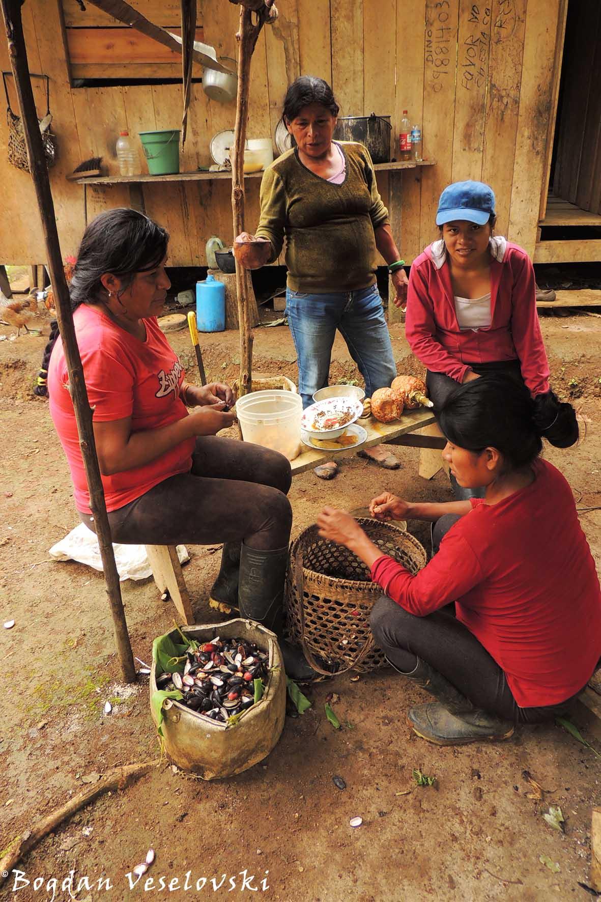 Activities in Ecuador